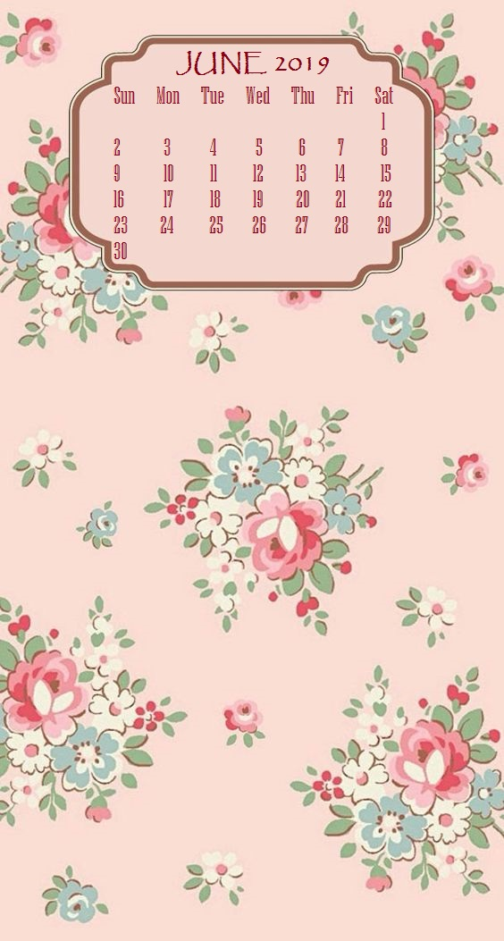 Cute iPhone June 2019 Calendar Background