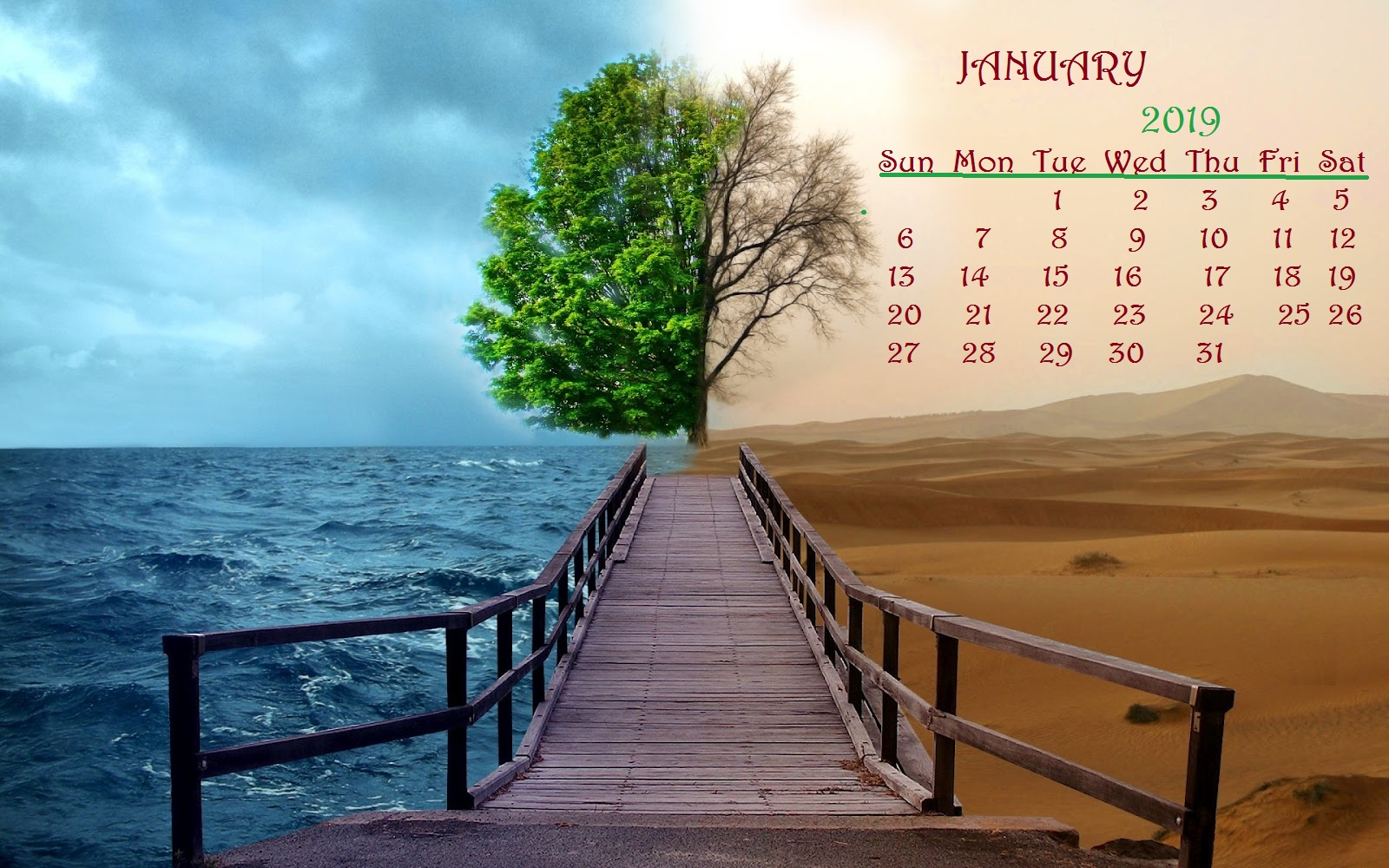January 2019 Desktop Calendar green tree with soil