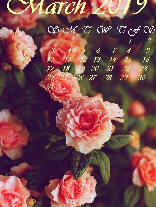 Lovely Flowers March 2019 Iphone calendar wallpaper