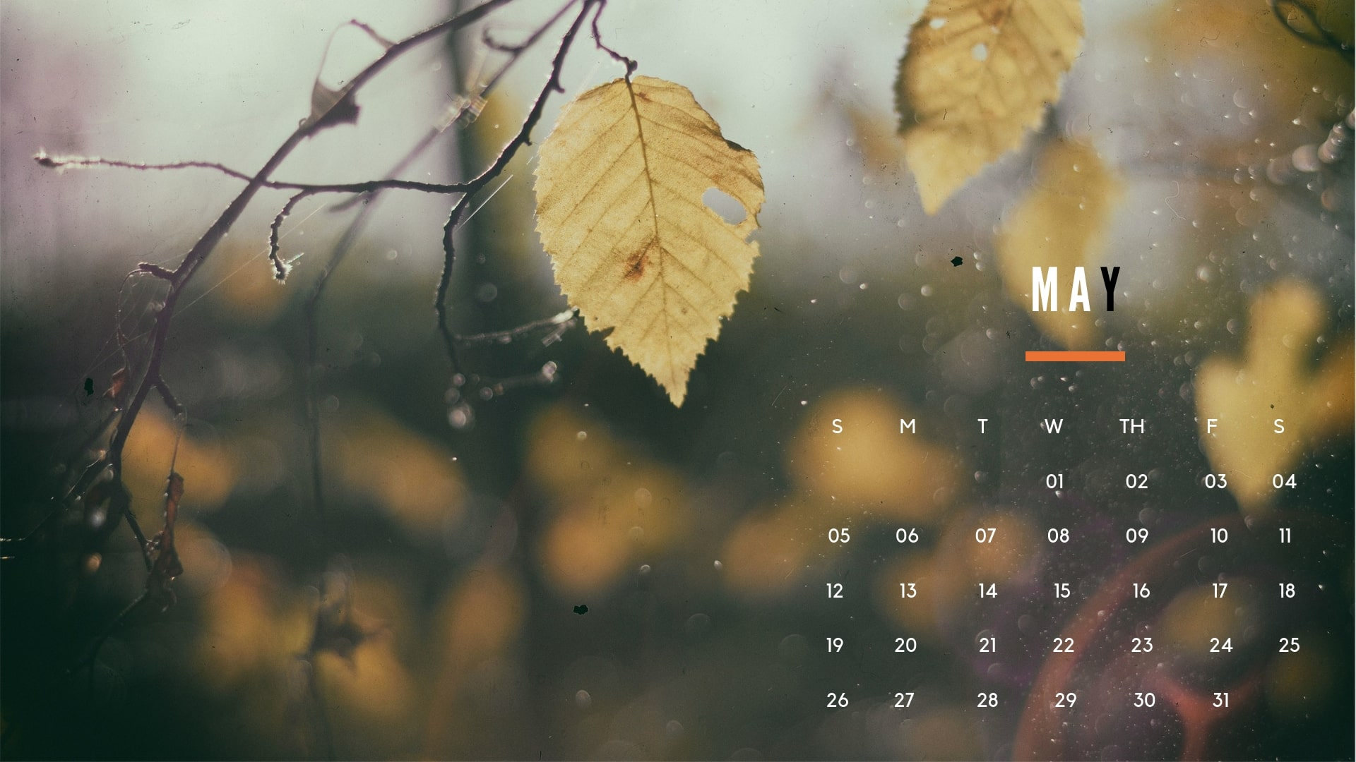 Free May Calendar Wallpaper 2019