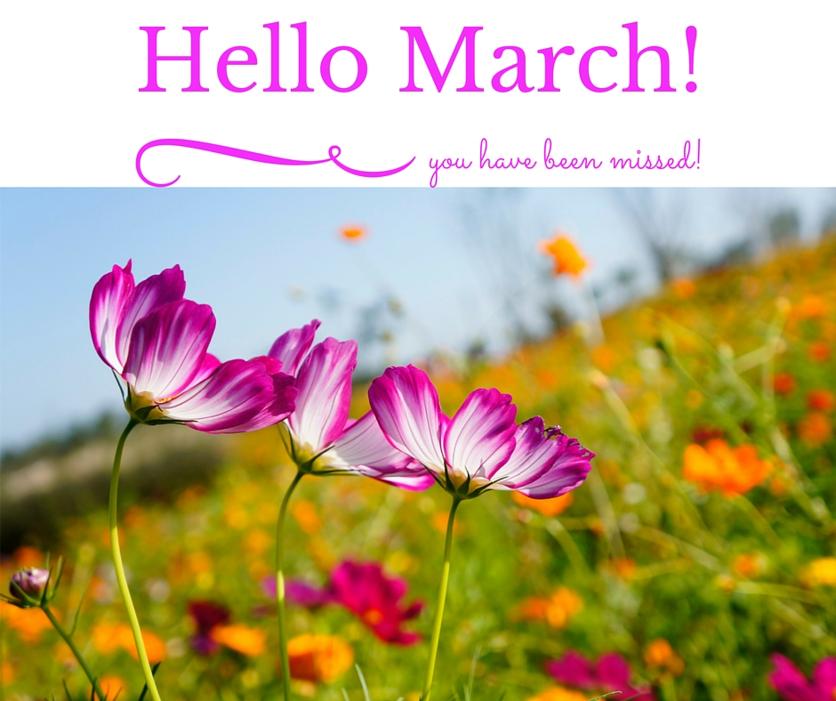 Hello March Photos