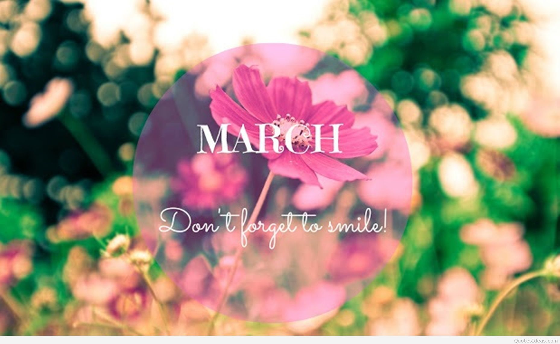 Hello March Quotes Images