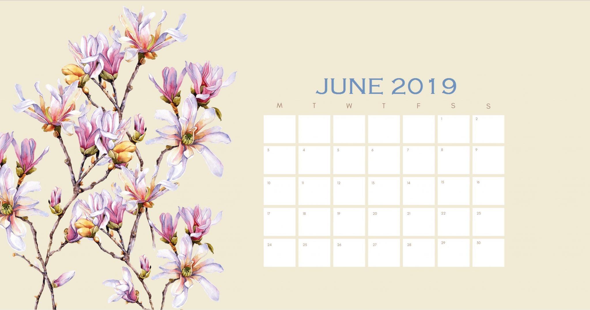 Beautiful June 2019 Calendar Design