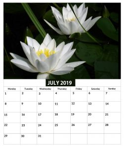 July 2019 Calendar For Office Wall