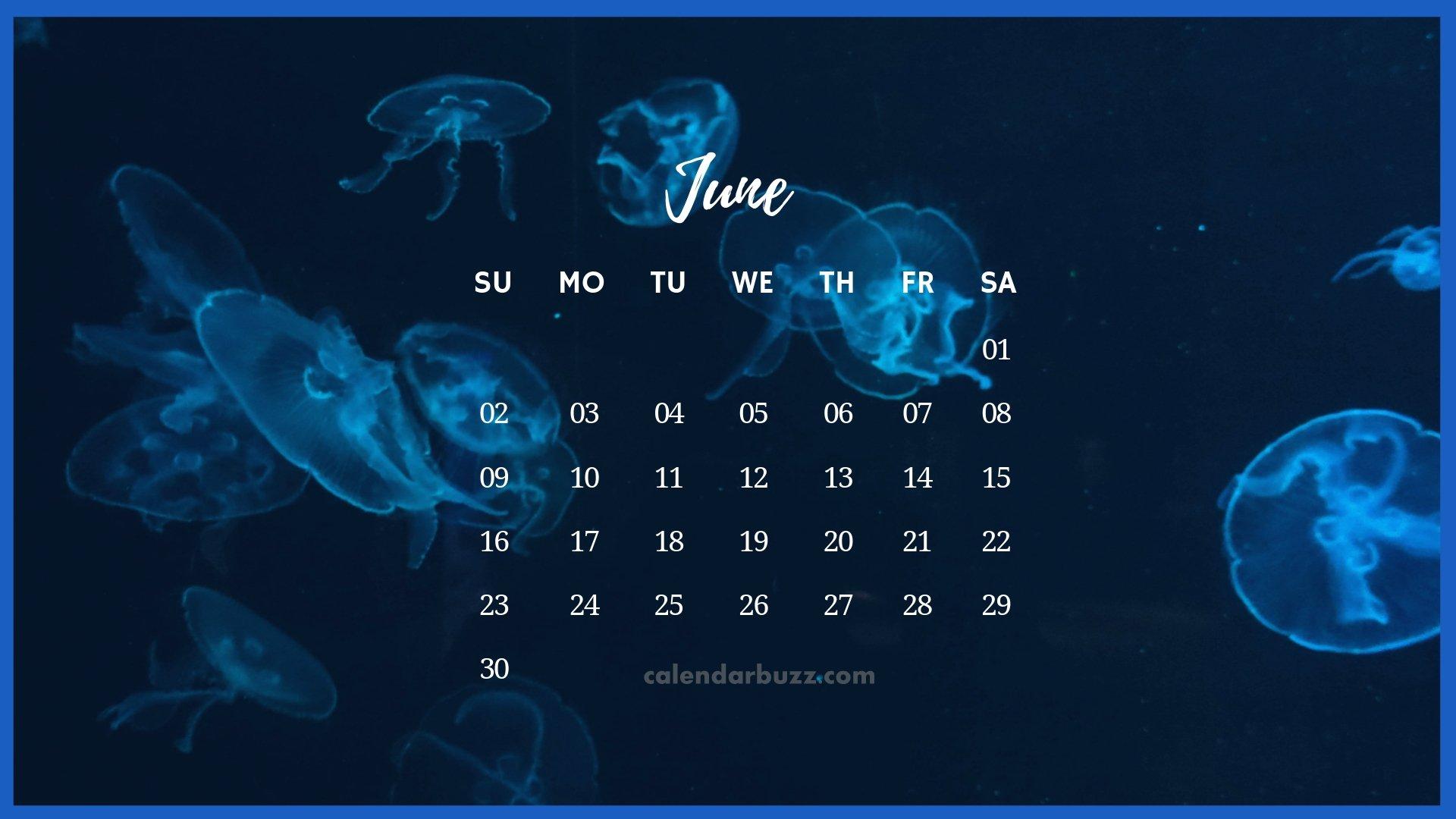 June 2019 Desktop Calendar HD Wallpaper
