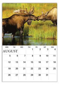August 2019 Calendar For Wall