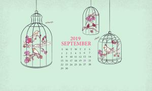 Cute September 2019 Wallpaper Calendar