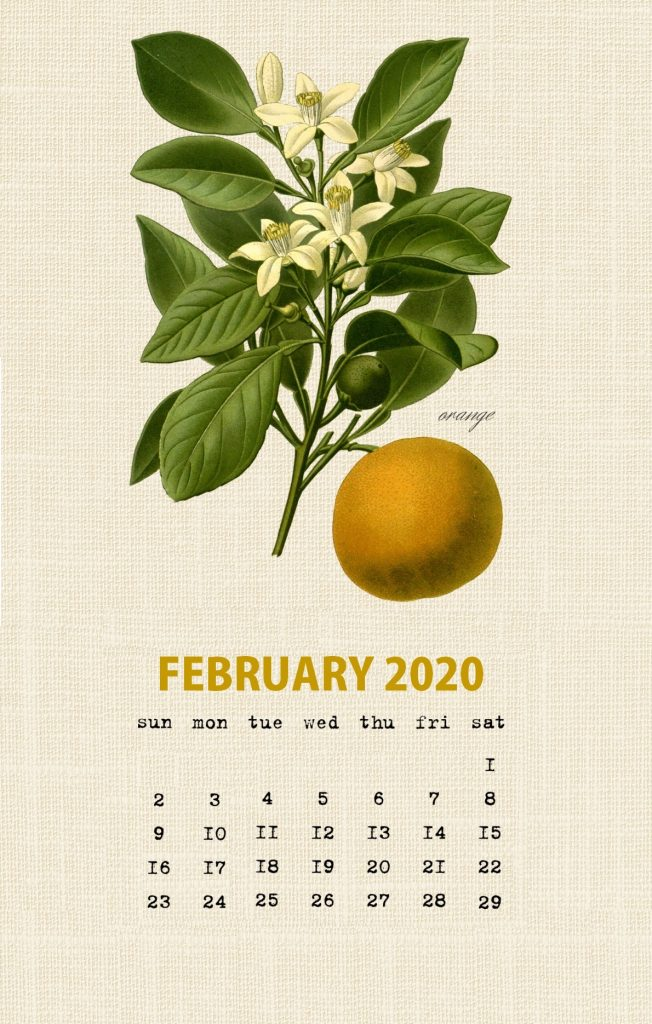 February 2020 Botanical Fruit Calendar