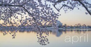 Nature Beauty AprilNature Beauty April 2020 Wallpaper 2020 Wallpaper