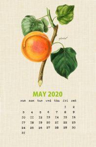 Cute May 2020 Wall Calendar