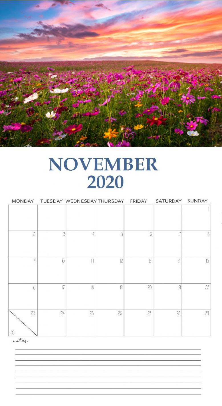 Beautiful November 2020 Wall Calendar