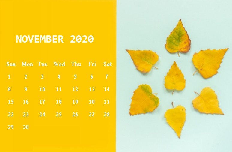 Cute November 2020 Floral Calendar