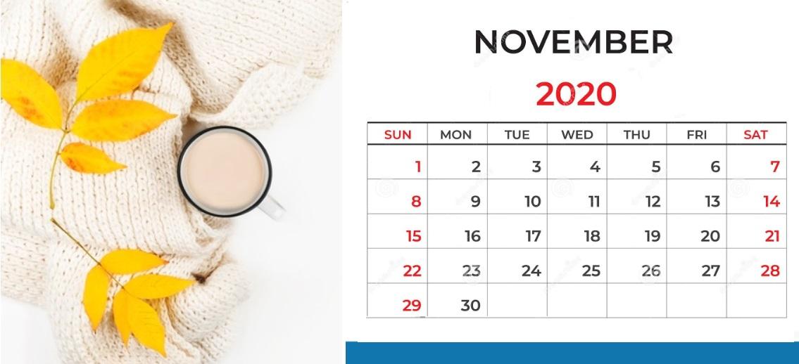 Floral November 2020 Calendar Printable