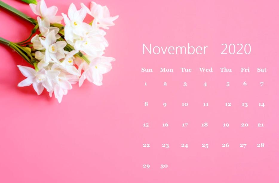 Floral November 2020 Calendar