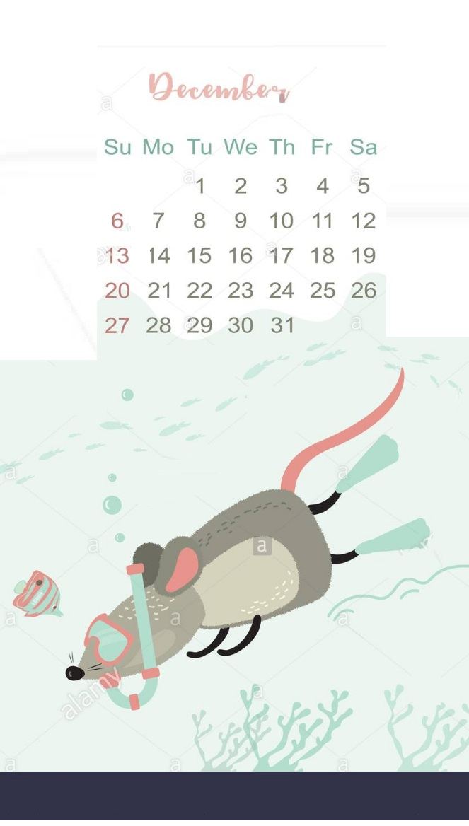 Funny and Cute December 2020 Calendar Designs